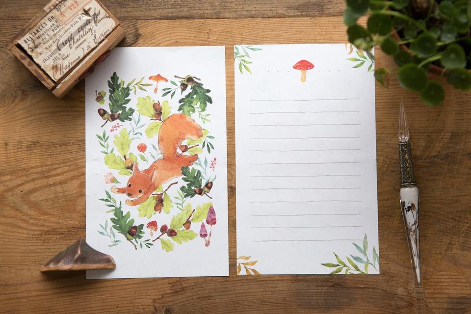 信紙組 - 松鼠時光